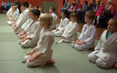 Kyu Prüfungen